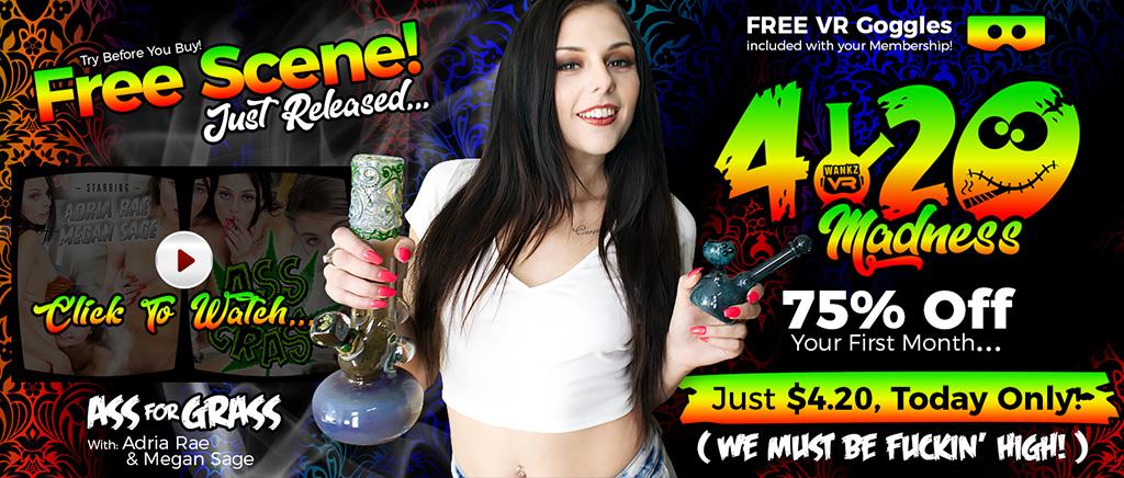 WankzVR 420 Madness